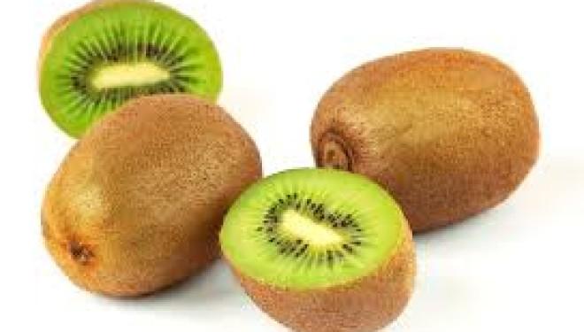 BORGO D'ALE: «è probabile che in primavera la batteriosi del kiwi si ripresenterà»