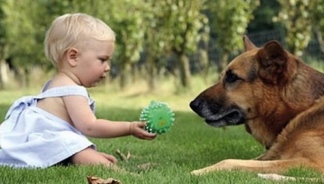 Bambini e cani: una convivenza fonte di ricchezza e di crescita