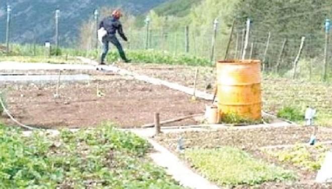 SANTHIÀ: E' primavera: orti urbani, solidali e biologici