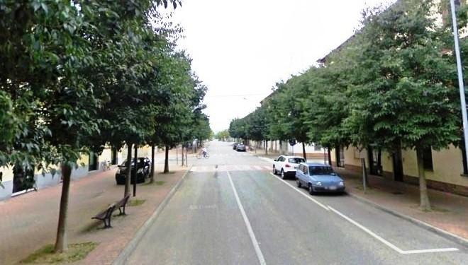 TRINO: Nel viale della Rimembranza un albero per ogni trinese caduto durante la guerra
