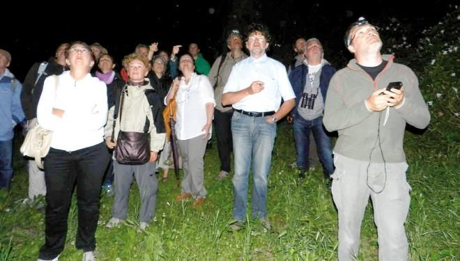 Verrua Savoia: A naso in su a guardare i pipistrelli