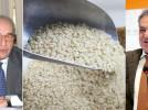 """Mecenate 90, altro colpo: 40 mila euro per spiegarci che """"Il riso è una risorsa strategica per lo sviluppo del Vercellese"""""""